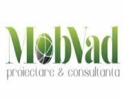 Firma de Consultanta Financiara Moreni